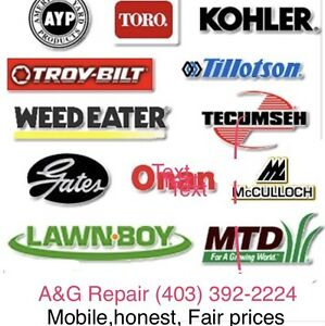 Lawn mower,small engine repair ,  mobile we come to you