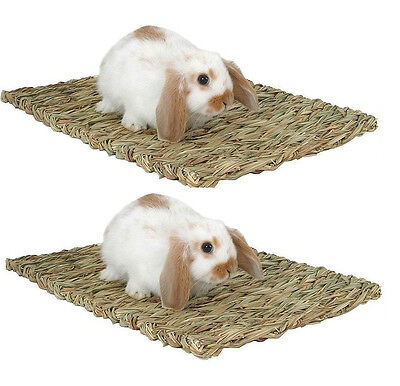 2 PACK New Woven Grass Mat Rabbits Guinea Pig Treat Bed Small Pet Animals