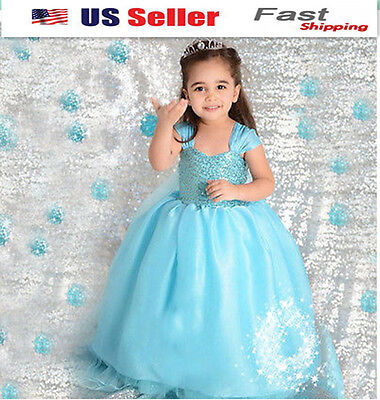 NEW Gorgeous Frozen Queen Elsa Princess Dress Up Cosplay Costume Party USA O99 - Frozen Queen Elsa Costume