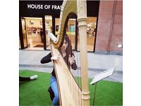 Traditional harp or fiddle lessons
