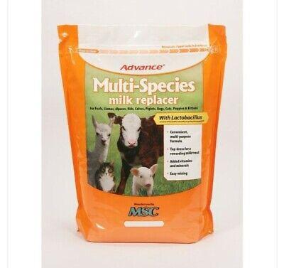 Advance Multi-species Milk Replacer 10 Lb