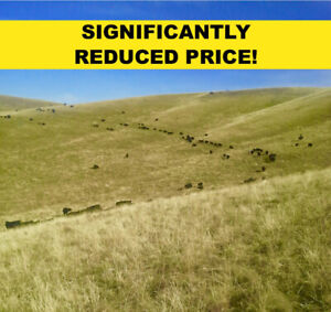 Significant Price Reduction on 1743 Acres west of Claresholm AB!