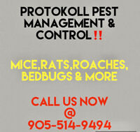 MICE,RATS, ROACHES & BEDBUGS CONTROL SERVICES IN MILTON/OAKVILLE