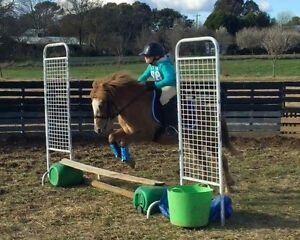 Children's second pony Sutton Gungahlin Area Preview
