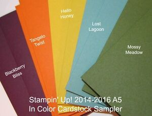 Stampin' Up! 14/16 In Color A5 Cardstock Sample - 10 sheets