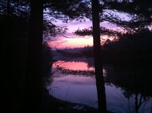 Prospect Lake Cottage rental - Bracebridge