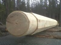 Rent a portable Sawmill, along with Sawyer