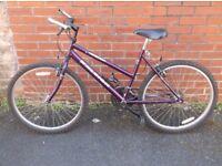 Ladies Raleigh Max Mountain Bike,
