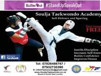 Martial Arts - Soulja Taekwondo