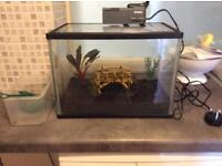 Fish tank, filter and extras