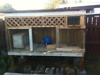 PRICED TO SELL - Outdoor Pigeon/Chicken Cage/Coop/Outcave