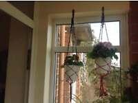 DIY indoor hanging plants holder