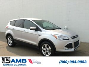 2015 Ford Escape SE 4WD with Reverse Camera, Sync and Fog Lights