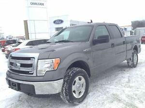 2013 Ford F-150 4X4|5.0L V8|LOW KMS|CLEAN