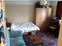 Massive room just ten minutes from city centre