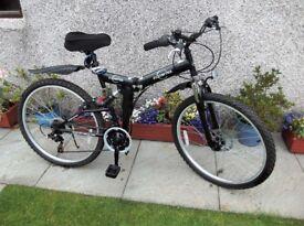 Ecosmo Folding Mountain Bike