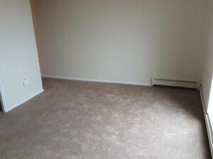 Special Offer: One Month FREE Desirable Bachelor Suites London Ontario image 5