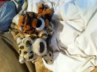 Leopard and Tiger Gotta Getta Gund Stuffies