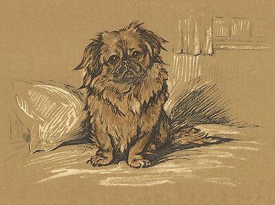 TIBETAN SPANIEL CHARMING DOG GREETINGS NOTE CARD CUTE SITTING DOG