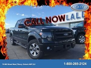 2013 Ford F-150 FX4, Leather, Moonroof, One owner!! Windsor Region Ontario image 1