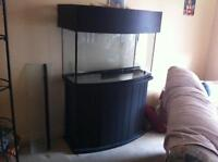 46 Gallon Bowfront with stand and custom canopy