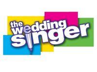 Singer Guitarist/ Wedding Reception