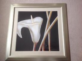 Ex show home large framed artwork