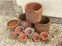 Rhubarb forcers and clay pots