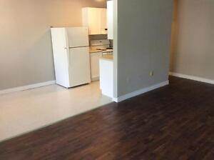 Beautiful 2 Bedroom Suites! Second Month Free! London Ontario image 11