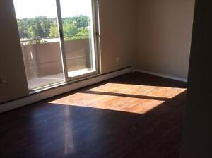 Special Offer: One Month FREE Desirable Bachelor Suites London Ontario image 9