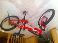 """Specialized 20"""" mountain bike"""