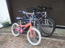 HIS & HERS, AND ALL THE FAMILY MOUNTAIN BIKES