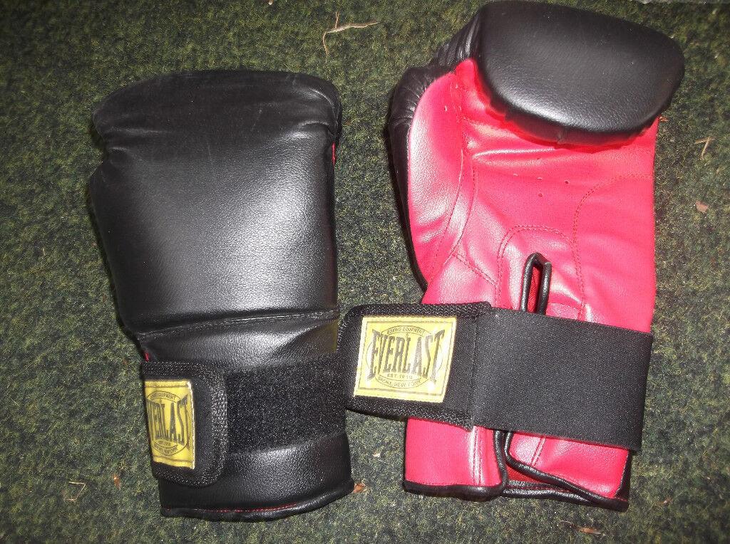 Boxing Gloves Everlast 14oz