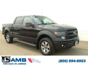 2014 Ford F-150 FX4 with Sony Audio, HID Headlights, Spray in Bo