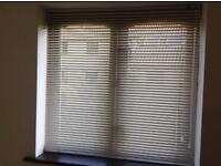 Venetian Blinds - magnolia - from Hillarys Blinds x 3