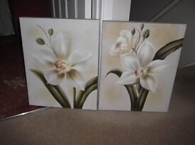 2 x Picture Canvasses