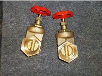 "2"" gate valve [brass]"