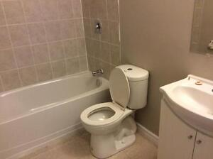 Beautiful 2 Bedroom Suites! Second Month Free! London Ontario image 9