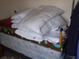 Single Beds x 2 with bedding.
