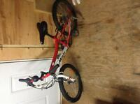 "2014 Miele kids 20"" tire mtn bike"