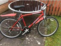Mountain bike NOW SOLD