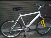 TALL MENS ALL ALIMINUEM FULL SIZE RALEIGH MOUNTAIN BIKE.
