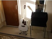 Tanglewood TW 5 Electric Acoustic Guitar