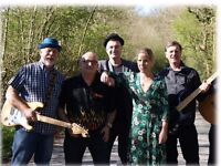 The Cwrtisans - 6 piece covers band for hire! Parties Celebrations Birthdays Clubs small or large!
