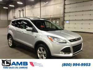 2013 Ford Escape SE 4WD with Sync, Roof Rails and All Weather Fl