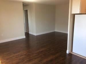Special Offer: One Month Rent Free on 1 Bedroom + Den London Ontario image 12