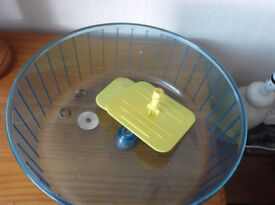rodent exercise wheel