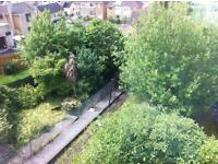 Gardenener wanted urgently for six student-let properties in and near Oldfield Park