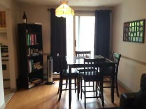 Beautiful 1 Bedroom in South End Available Sept 1