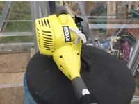 Ryobi petrol strimmer, plus petrol can and instructions